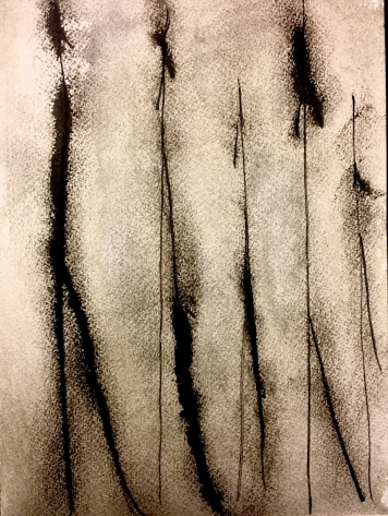 """Shadowed, 2015 Ink on Paper 8""""x10"""""""